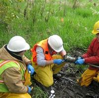 Acid Sulfate Soil Management