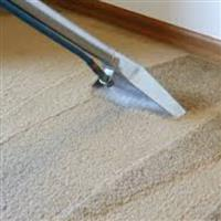 Allergy Free and Natural Carpet Cleaning