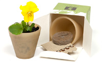 Biopot Biodegradable & Compostable Grow Kit