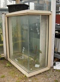 Building Supplies - Windows