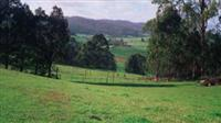 Environmental Land and Vegetation management