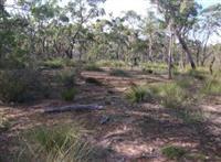 Environmental Management Plans
