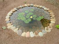 Environmentally Conscious Landscape Services