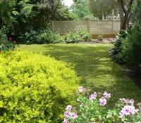 Landscaping Services for your Gardens