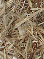 Premium Quality Recycled Mulch