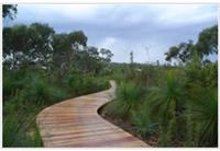 Revegetation Services