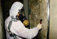The Deadly Truth about Asbestos