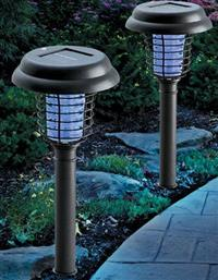The Truth About Dull Solar Lights