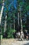 Day Fraser Island 4Wd Tour