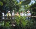 Guided Aviary Tours