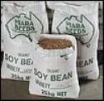 Organic Culinary Soybean