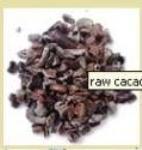 Raw Criollo Cacao